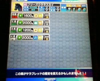 8_20090505164934.jpg