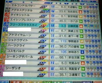 8_20090506172207.jpg