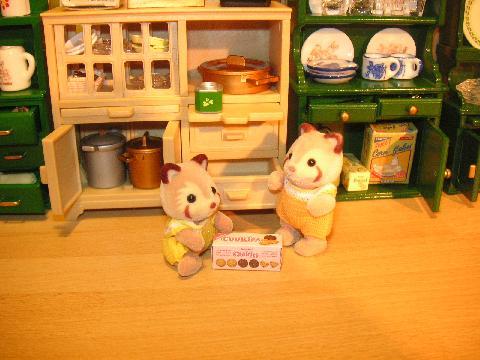 食器棚アライグマ