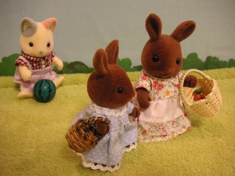 ブラウンウサギ買い物8