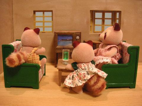 アライグマ家TV
