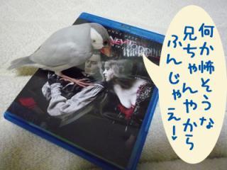 yume_hina68.jpg