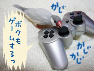 yume_hina71.jpg