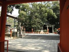 八坂神社に入る