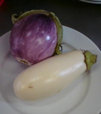 茄子「ローザビアンカ」 「ホワイトスノー」