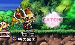 080213catch!つかいまわし?