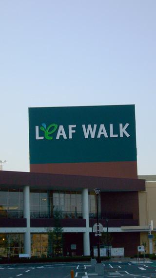 leafwalk2.jpg