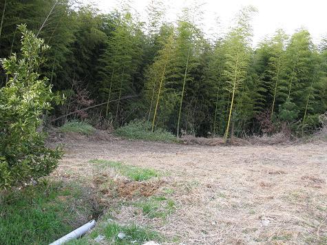 H21.2.28耕作放棄地開墾 027