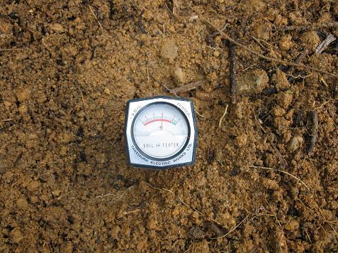 H21.2.28耕作放棄地開墾 012ph6.0