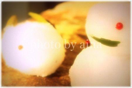 IMG_7178_edited-2_20090113211613.jpg