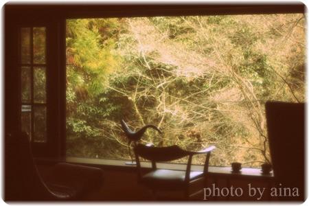 IMG_7247_edited-1.jpg