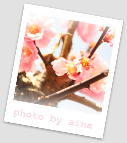 IMG_i7743_edited-1.jpg