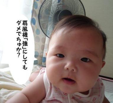 MAIKA09092.jpg