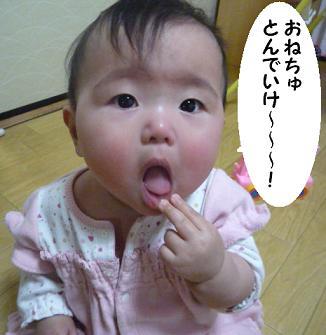 maika01042.jpg