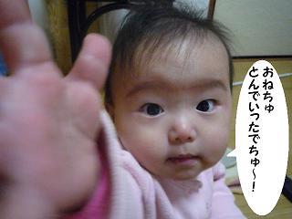 maika01071.jpg