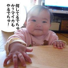 maika01141.jpg