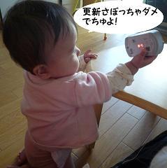 maika01142.jpg