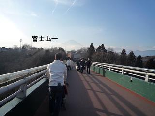 maika01295.jpg