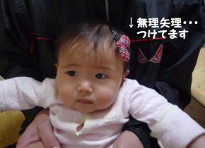 maika02049.jpg