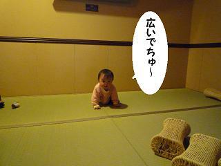 maika02261.jpg