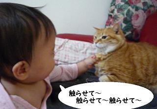 maika03172.jpg