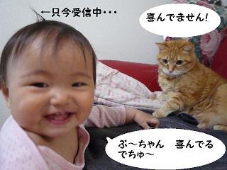 maika03173.jpg