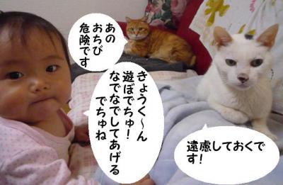 maika03174.jpg