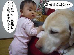 maika03178.jpg