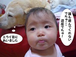 maika03179.jpg