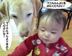 maika031911.jpg