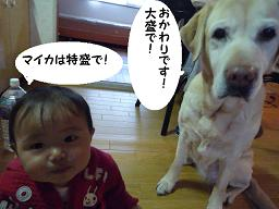 maika03192.jpg