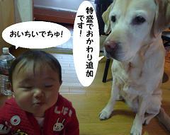 maika03193.jpg