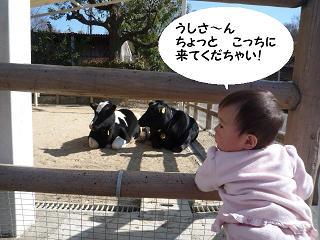 maika04023.jpg