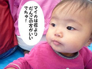 maika04041.jpg