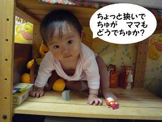 maika040814.jpg