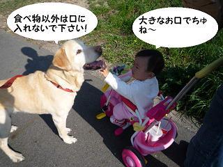 maika04102.jpg