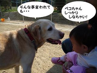 maika04105.jpg