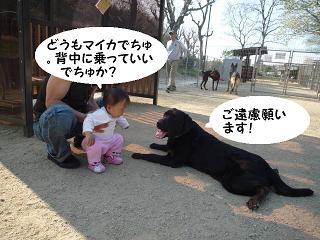 maika04106.jpg