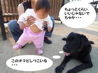 maika04107.jpg
