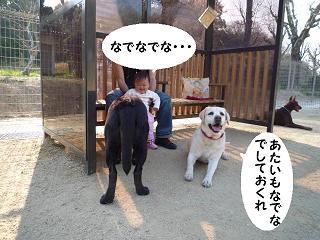 maika04108.jpg
