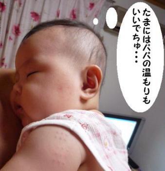 maika09073.jpg