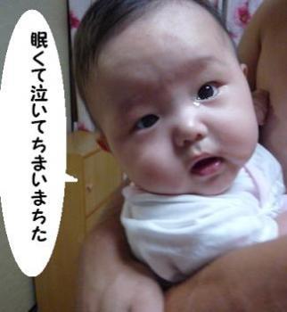 maika09101.jpg