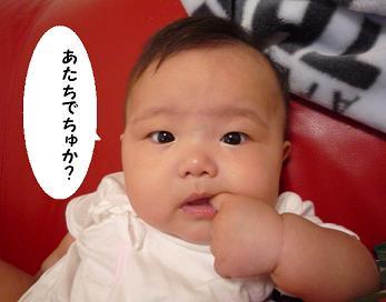 maika09131.jpg