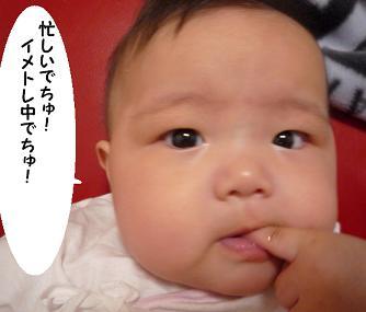 maika09132.jpg
