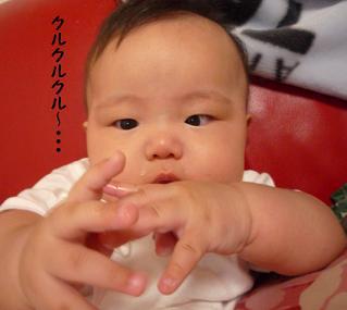 maika09134.jpg