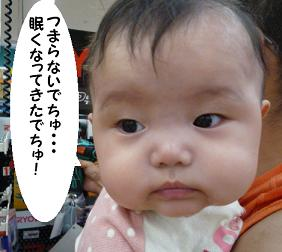 maika091413.jpg