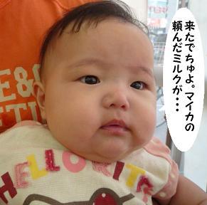 maika09142.jpg