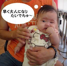 maika09145.jpg