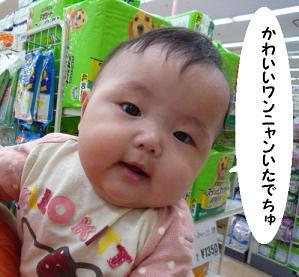 maika09148.jpg