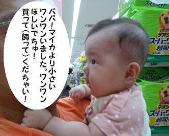 maika09149.jpg